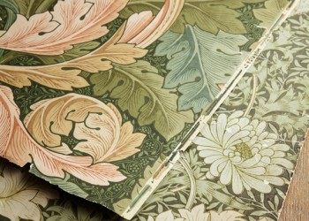 cover Acanthus-and-Chrysanthemum
