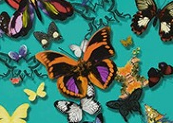 TAPETA BUTTERFLY PARADE-LAGON