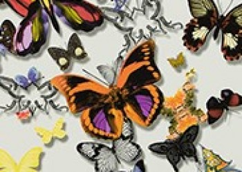 TAPETA BUTTERFLY PARADE-MULTICOLORE